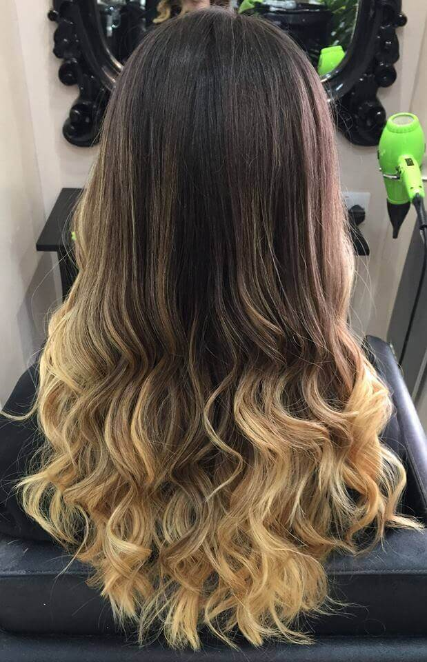 Gallery Hair Jungle