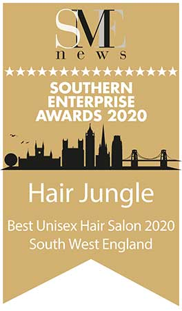 Southern Enterprise Awards 2020 Winners Logo